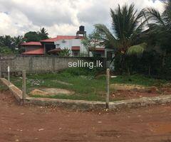 Land for Sale - Wattala / Mabola
