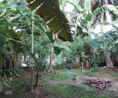 House for Sale in Wellampitiya - Halmulla