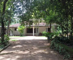 A house for sale in Kaluaggala