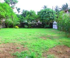 BARE LAND FOR SALE in Athurugiriya