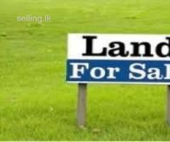 Land for sale in Kirindiwela