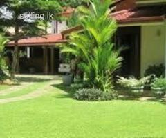 Land & home For Sale