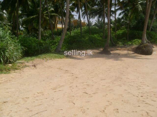 Beach Land - Balapitiya