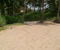 Beach Land - Balapitiya