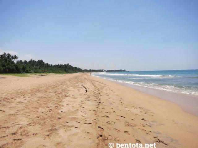 Beach Land - Kosgoda