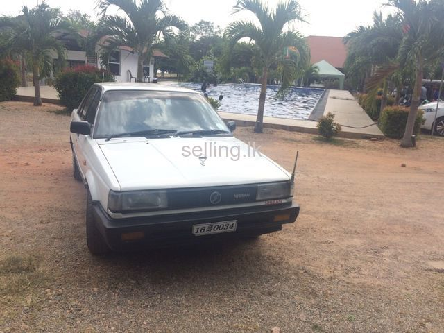 Nissan trad sunny for sale