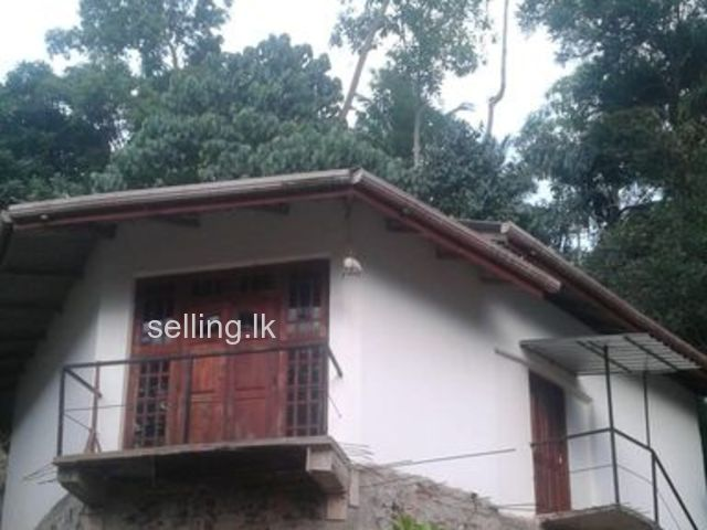 House in Digana for sale