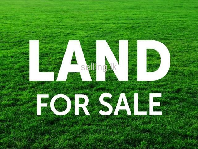 LAND FOR SALE Mapitigama Malwana