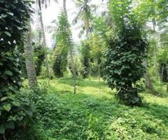 prime land green city,12perches  land for sale
