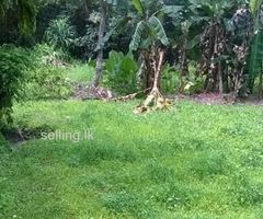 Land for Sale in Madapatha - Piliyandala