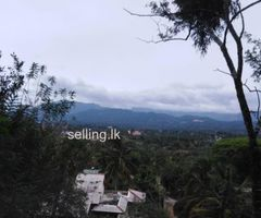 Land for sale in Kandy Gurudeniya