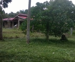 Land for sale in nilpanagoda