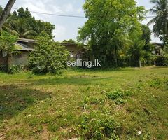 Land For Sale near RMV