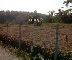 10.6P 2 Lands Sale in Kiriwaththuduwa,Homagama