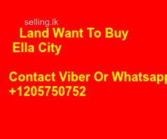 Wanted land In Ella City Area