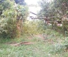 56 Perches in Kelaniya For immediate sale
