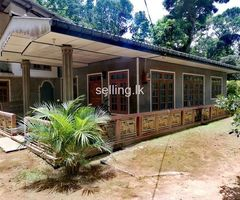 Houses with Land sale in BORALANDA,