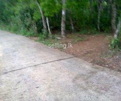 Rubber land for sale in Ratnapura