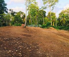 Land for Sale - Galle