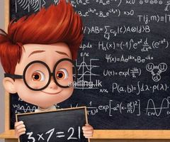 Mathematics/Science for O/L (Individual/Group)