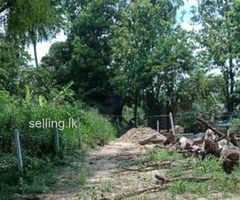 Land for sale in dambulla kurunegala main road