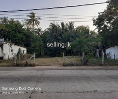 LAND FOR SALE AT DALUWA (Kalpity Main Road)