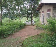 Land with small house for sale Kaluthara Dodangoda