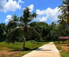 Highly residential land, for sale in Yakkala