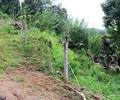 Land for sale in Kandy Alawatugoda