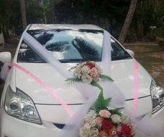 Prius car for wedding hire | Gampaha