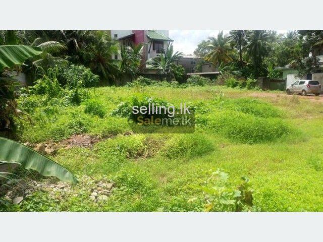 Polgahawela Land for sale