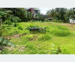 Polgahawela Land for sale