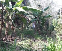 Land for sale Galigamuwa, Ballapana
