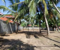 Land For Sale in Wennappuwa