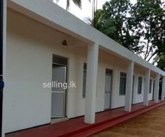 Four Rooms For Rent In Kuliyapitiya Town
