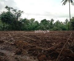 Land for sale near Kurunegala town