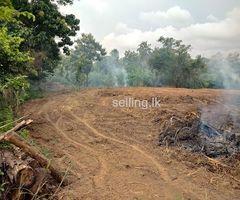 Land for sale near Kurunegala town