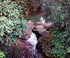 28p land for sale in Horana