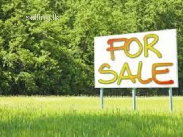 land for sale near kahawaththa town