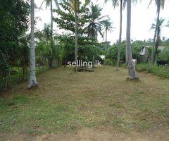 Immediately sale land in panadura