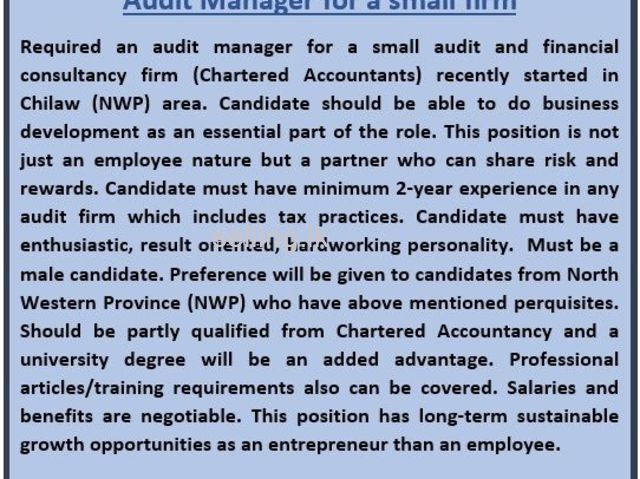 Audit Manager for a small firm