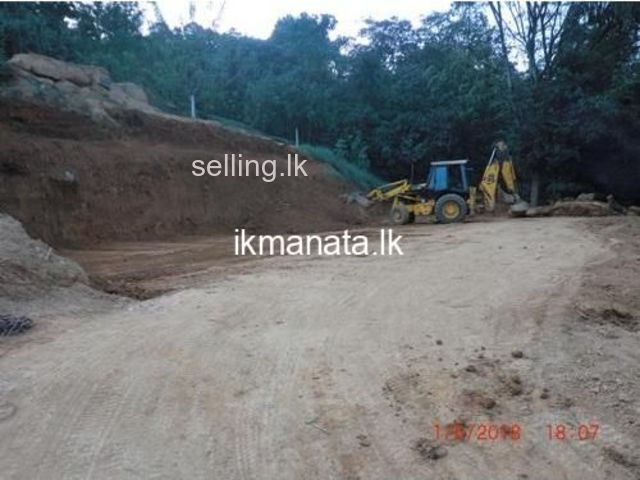 Valuable land for sale In Pelmadulla.