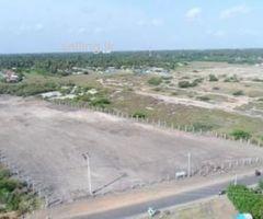 BARE LAND FOR SALE | 86,Araly Road, Jaffna.
