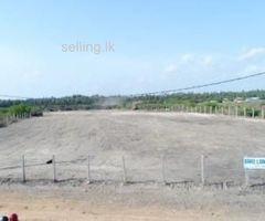 BARE LAND FOR SALE   86,Araly Road, Jaffna.