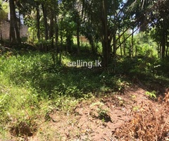 Land for Sale galle town