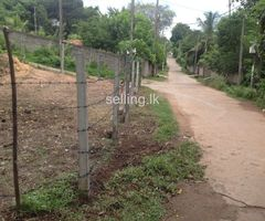 Sale for Land In Paratha Dolewatha