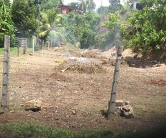 Sale for Land In Paratha Dolewatha