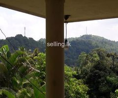 Land with or without House for Sale Kandy