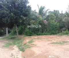 Land For sale in Avissawella