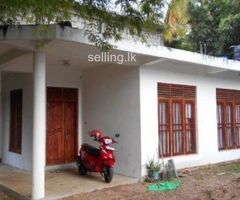 Apartment for Rent - Pelmadulla